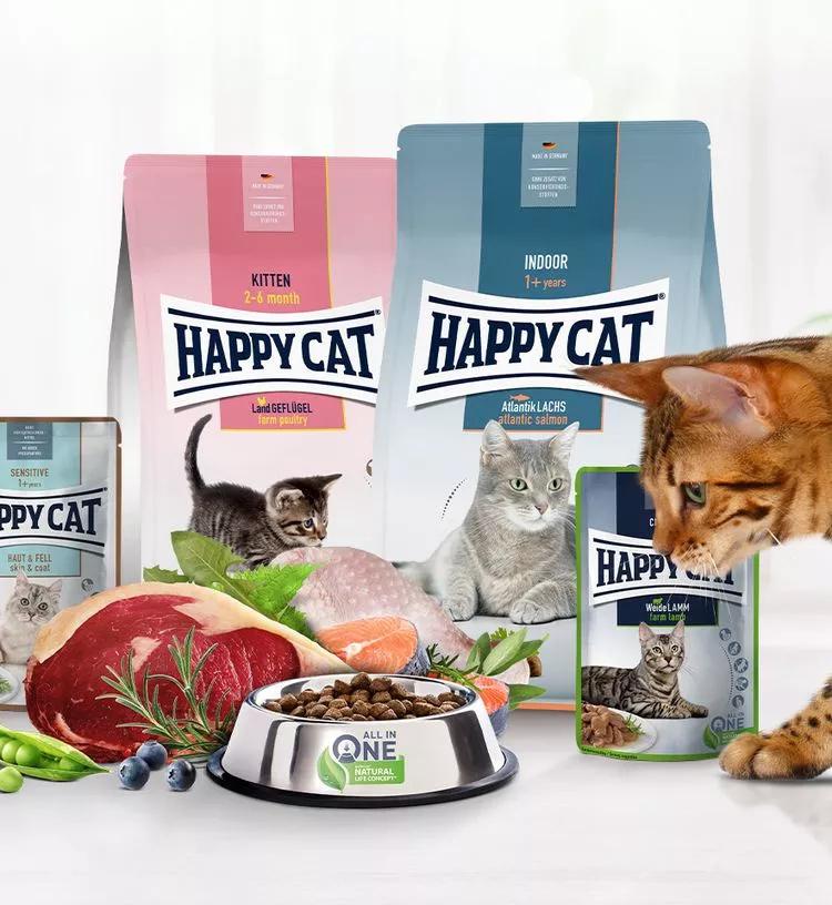 De nieuwe happy cat