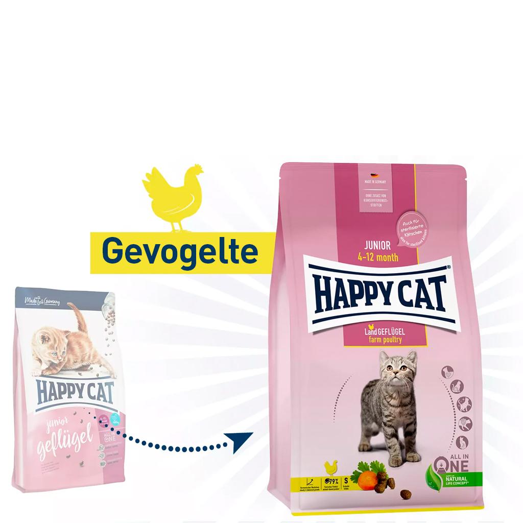 Vergelijk kattenvoeding junior