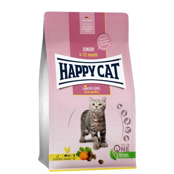 Junior kattenvoeding