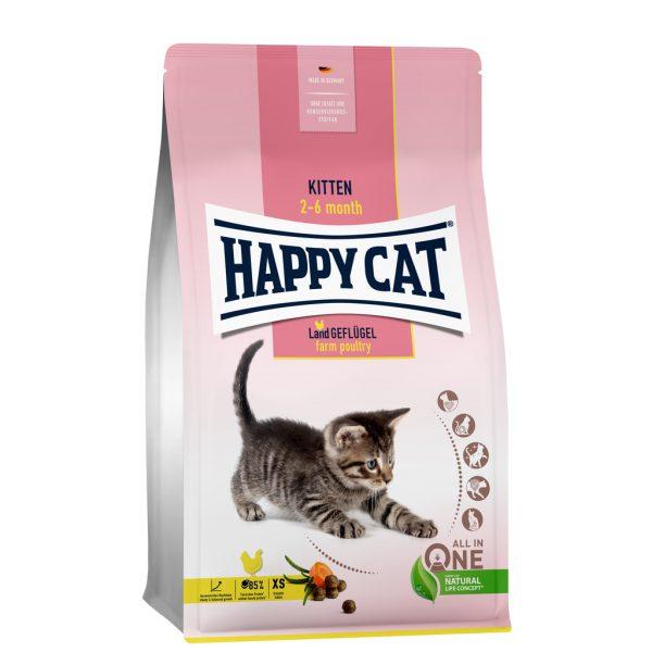 Kitten voer voor de kat