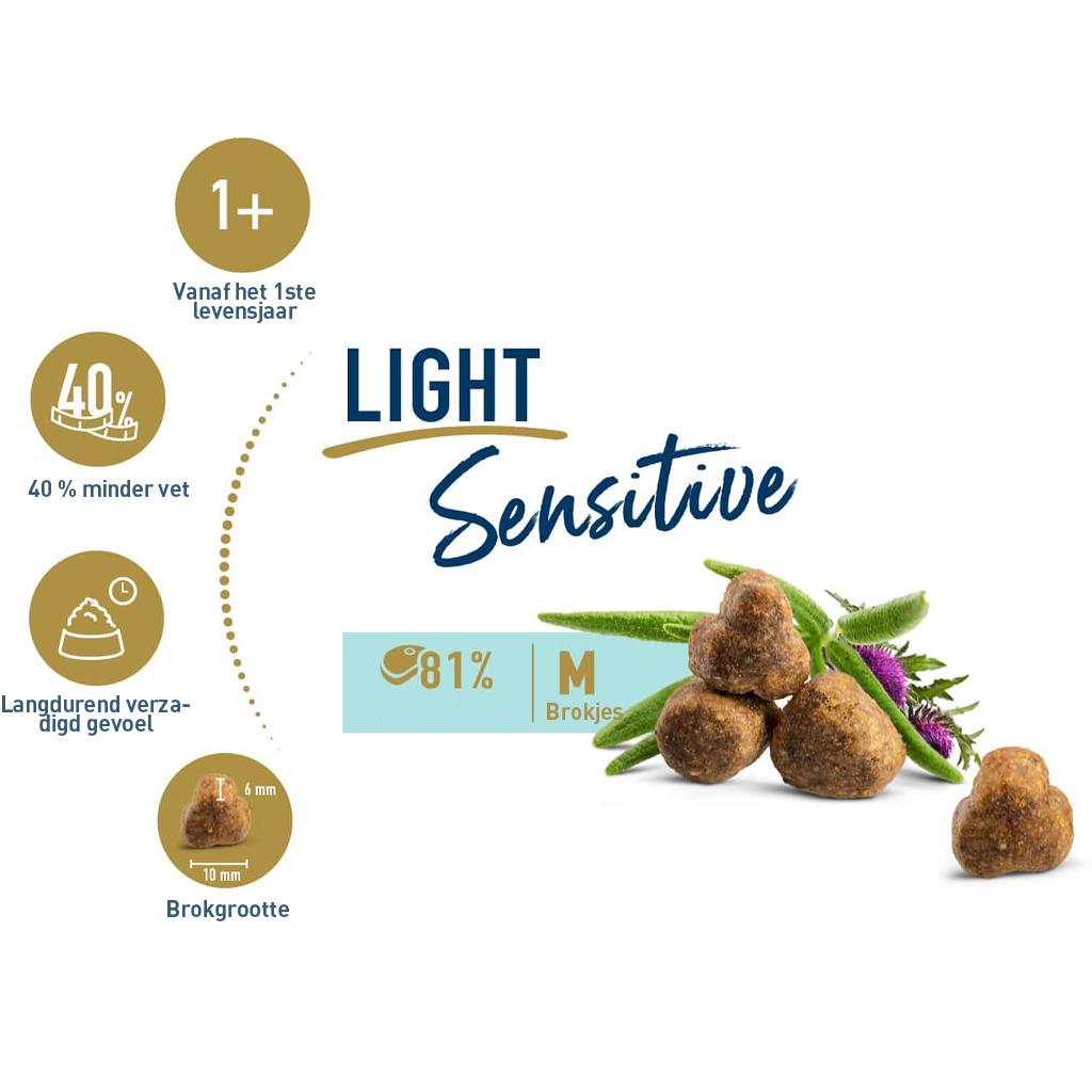 light info